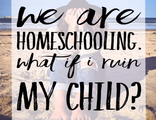 deciding to homeschool is no light decision it can be scary!